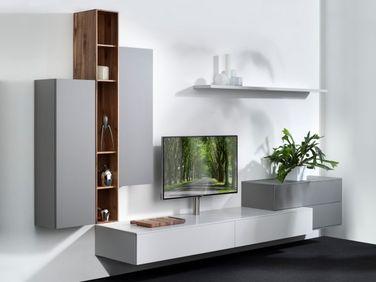 Kastenwand tv meubel